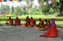 """佛祖诞生地~蓝毗尼 蓝毗尼,梵语""""可爱""""的意思。位于尼泊尔西南与印度交界,距加德满都360公里。白色"""