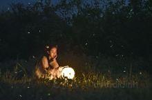 没有萤火虫的夏天是不完整的 清宵只影借月光惹三分思量,欲照荧光惋心事静待月叩访。在漓江河畔,20元人