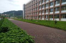 广西培贤国际职业技术学院