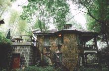 住莫干山民国老别墅,睡在风景里。院子里500多年的大枫树,是整个莫干山的网红树,秋天红枫,此刻树下乘