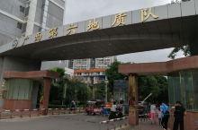 在贵港市的黄大年同志事迹展馆看到,黄大年1958年8月出生在南宁市,后在广西多地生活过,其中在贵港7