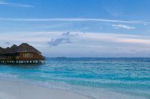 温暖的阳光 白色的沙滩 湛蓝的海水 斑斓的鱼群 快乐的暑假