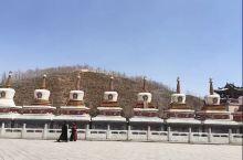 2015年的塔尔寺,15年已经是第二次去西宁的塔尔寺了,什么样的佛缘,两次去都能见到活佛并摸顶。塔尔