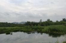 水镇湿地公园