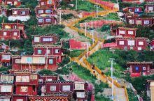 """五明佛学院是""""世界第一""""规模的佛学院。  连绵蔓延的红色,在夕阳下闪闪发光,成千上万的红色僧舍都是由"""