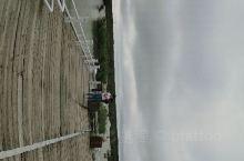 兴凯湖湿地公园 真的是北方养老圣地了呢