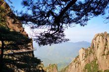 三清山的景点,人不多,迎客松也挺有意思的