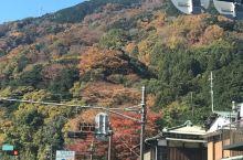 秋色富士山,箱根大涌谷