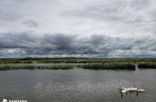 每年都会回到兴凯湖,我出生的地方。盘桓几天,吃鱼看天空,感受风和日丽,感受自然景色……