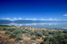 羚羊岛州立公园:只能车入的公园 观大盐湖最佳地点  大盐湖是美国极为出名的景点,而其中羚羊岛州立公园