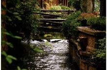 【丽江古城是一个充满精致景观的古城】  古城通过千百年来富有生活情趣的人民不断创造,以及人们对生态关