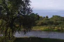 坐在河边的古树下抽根烟,油然想起前苏联著名作家肖洛霍夫的那部传世名著《静静的顿河》。 眼前这两个枯死