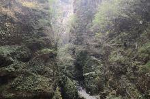 百里峡,天然大氧吧,名不虚传!峡谷里有两条路线,建议先选一条走到头往回返,再走另一条,再回返。这样花