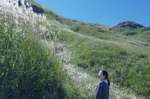 拓荣鸳鸯头草场   鸳鸯头草场一个鲜有人知的高山草场,因为他的闭塞成就了古朴美丽和神秘,万亩的高山草