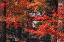 龙穏寺         龙稳寺算是京都周边游客非常少的赏枫秘境,第一眼看见落满枫叶的参道马上被镇住,