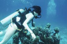 坎昆的水下博物馆大约是在海面以下10米左右,海底有许多神秘的雕像和汽车的遗迹。这些都是当时人们沉入海