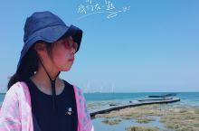 台湾环岛自驾,起于台北,先跨越南部地区,台中的高美湿地,南投的清静农场,日月潭,台南的安平古堡,高雄