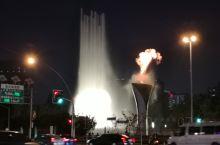 夜晚的大宁音乐广场,灯火璀璨,音乐喷泉随着街拍翻飞,在郁金香公园里远观,又是另外一番宁静典雅。