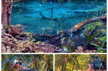 【甲米翡翠蓝湖】 隐秘在甲米原始森林丛林深处的翡翠池与蓝湖一定是上甲米岛游玩必去的一个行程,翡翠池与