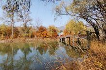 滴水壶是百里画廊中的一颗明珠,随着秋天的到来,秋风吹黄了绿叶,山谷中的变叶树争奇斗艳,变得五彩缤纷,