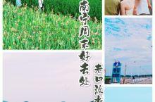 南宁新晋网红地-老口渡水利枢纽  老口渡水坝不知不觉就成为了南宁人心中的一个网红地了,在广西连续几个