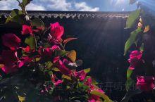 择一座古城,看庭院花开花落,看天上云卷云舒,享岁月静好时光!我爱丽江!