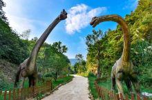 咸宁柃蜜小镇山谷茂密的丛林中,超大只的恐龙雕像散步在园区各处。每一只造型不一,有的憨态可掬,有的威武
