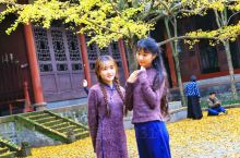 罨画池黄摄  : 崇州罨画池是四川仅有的苏州园林式风格建筑 ,原属杨姓大户 . 园内一池绿水斜躺在中