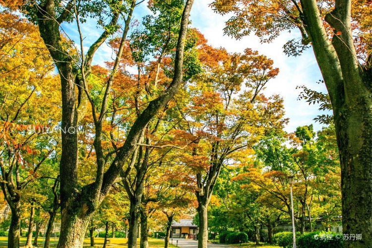 오사카성 니시노마루 정원2