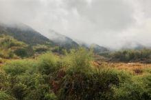 平江的山村,天气还是雨蒙蒙的,远处山脉笼罩在一片雾气当中,据说有野猪等动物,养鱼的池塘是在山中,冒着