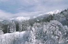 """新穗高缆车 :缆车上下来回尽看""""日本阿尔卑斯山""""冬季美景。"""