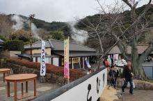 """福冈县大分市海地域 地域有""""鬼"""",开之上为""""鬼莲""""。 温泉一词由""""汤""""演变而来。足汤、鱼汤、手汤等等"""