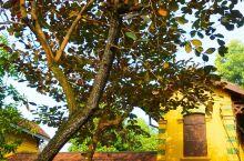 胡志明故居 河内直辖市(Ha Noi),是越南社会主义共和国的首都,越南第二大城市,位于越南北部的红