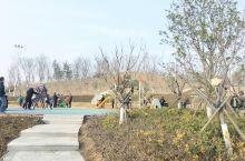江苏沭阳南山公园,位于沭阳南部新城南湖街道,靠近苏奥电子产业园,交通十分便利。至于公园环境,请参考图