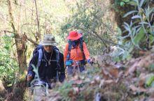 尼泊尔|徒步ABC 享受和崩溃并存 因为一张满山杜鹃的图片决定在杜鹃花开的时候徒步ABC,却因为各种