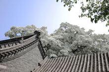 """孟府孟庙景区   邹城·济宁  孟府,是孟子嫡系后裔居住的宅第。与同在邹城的孟庙、孟林合称""""三孟""""。"""