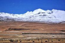 青藏线之拉萨—纳木措—那曲 沿着念青唐古拉山脉一路前行,天蓝得令人窒息,云近得就在手边,雪山下绿皮火