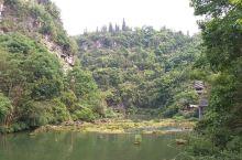 """黄果树瀑布为世界著名""""大瀑布"""",瀑布宽101米,高77.6米,气势磅礴,美丽如画,明代大旅行家徐霞客"""