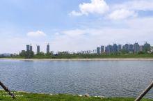 凤凰湖很漂亮的,有空去看看吧
