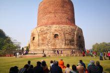印度,瓦拉纳西,鹿野苑。 在印度教盛行的印度,佛教的东西能很好保留下来,并吸引来自世界各地的信徒来比