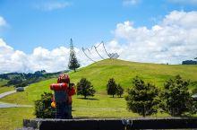 新西兰每月仅开1天刘亦菲也打卡的奇妙农场 刘亦菲在新西兰拍摄「花木兰」的时候,都晚了哪些地方呢?其中