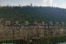 远科大的在校学生,今天在老师的带领下去参观了博物馆,印象最深的几个地方是:①呆萌可爱的企鹅,那圆鼓鼓