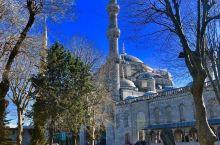 蓝色清真寺:听过这首歌吗?我想要带你去浪漫的土耳其,然后一起去东京和巴黎,其实我特别喜欢迈阿密,和有