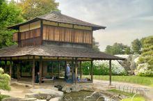 岡山市后乐园,日本三大名园之一,亦是廻遊式的庭院。里面养有丹顶鹤,乌龟和锦鲤,茶林,梅林,桜花和杜鹃