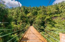 龙泉大峡谷,飞瀑清泉间的戏水之乐 当我们看到这座山间吊桥时,龙泉山大峡谷到了。大峡谷与瓯江源几乎是遥