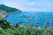清明小长假上海周边游|希腊很远,枸杞很近:东京很远,童心很近 一个半小时,远离钢筋水泥巨人的桎梏,在