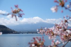 富士河口湖町,推薦