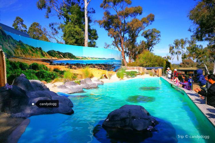 巴拉瑞特野生動物園1
