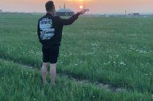 内蒙古大草原之行