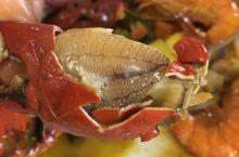498元每人的螃蟹自助餐,性价比较高,螃蟹肉很多!另外水果、点心也很多,饮料来收费55P